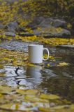 A long view of blank white coffee mug in the river royalty free stock image