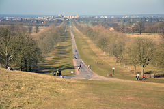 The Long Walk, Windsor Great Park, Windsor Castle, England Royalty Free Stock Photography
