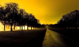The Long Walk in Windsor, United Kingdom. By night royalty free stock photos