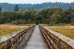 Long walking boardwalk leading over wetlands to forest. Edge royalty free stock images