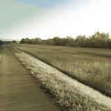 Long walkway Stock Image