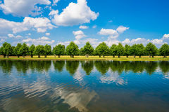 Long Water Canal. A row of trees with reflections along The Long Water Canal in Hampton Court Park in South London, UK royalty free stock image