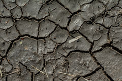 Long waterless dirt completely dried out, texture Royalty Free Stock Photography
