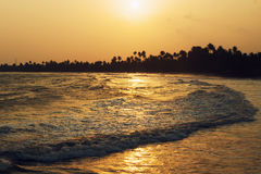Long wave, golden sunset on the ocean shore in the tropics. Silhouette of palm trees on the horizon. Long wave, golden sunset on the ocean shore in the tropics Stock Photo