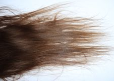 Long, wavy brown hair on a teenage girl stock photo