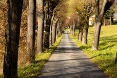 Long way in autumn Stock Photo