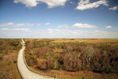 Road in Everglades. Scenic view of road receding through Shark Valley in the Everglades National Park, Miami, Florida, U.S.A Stock Photography