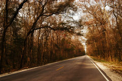 A long way home. A shot of a narrow straight road Royalty Free Stock Photography