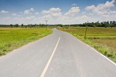 Long way road Royalty Free Stock Image