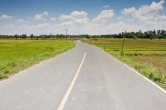 Long way road Royalty Free Stock Image