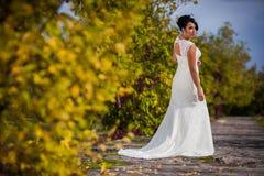 Long Wedding Dresses. Stylish Autumn wedding a beautiful bride and brave groom Royalty Free Stock Photo