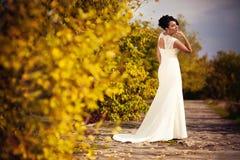 Long Wedding Dresses. Stylish Autumn wedding a beautiful bride and brave groom Stock Images