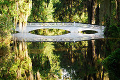 The Long White Bridge at the Magnolia Plantations and Gardens in Charleston, South Carolina. Stock Photo