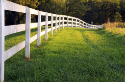 Long White Fence Stock Photo