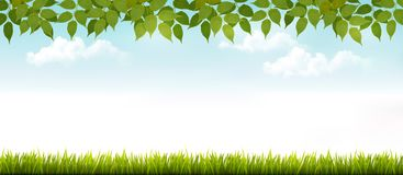 Long white fence banner with grass and leaves. Stock Images