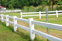 Long white fences around farm field. Royalty Free Stock Photo