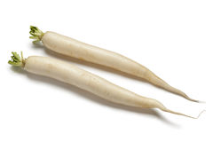 Long white Radish Stock Photo