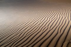 Long wind formed ripples with shadow defined edges in dunes of H. Idden Vlei, Sossusvlie Namibia Stock Photography