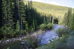 Roadside river in Alberta, Canada Stock Photos