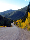Long and Winding Road. Winding gravel road through Aspen and Pine in the Rocky Mountains of Colorado stock photography