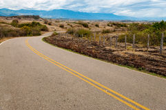 Long Winding Road Royalty Free Stock Image