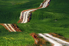 A long and winding rural path crosses the green hills, Tuscany, Italy Royalty Free Stock Image