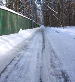 Long winter road through forest Stock Photo