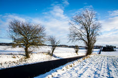 Long winter road - landscape Stock Photography