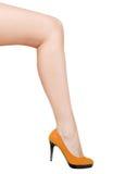 Long woman leg Stock Photography
