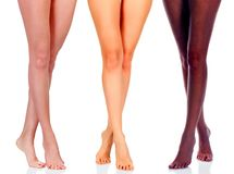 Long woman legs of black and caucasian girls. Long women legs of black and caucasian girls isolated on white background Royalty Free Stock Photo