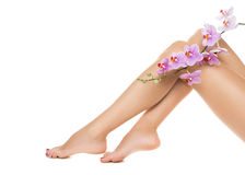 Long woman legs and orchids Stock Photo