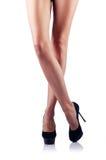 Long woman legs on white stock image