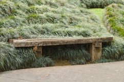 Long wood bench on grasses field. Royalty Free Stock Photos