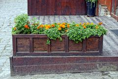 A long wooden box with flowers on the sidewalk near the house Royalty Free Stock Image