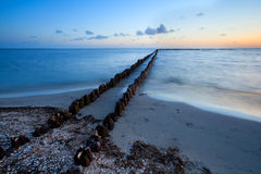 Long wooden breakwater in North sea Royalty Free Stock Images