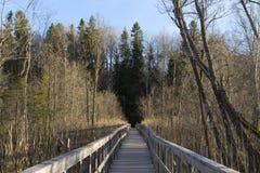 Free Long Wooden Bridge In Sweden Scandinavia Royalty Free Stock Photo - 88505945