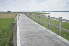 Free Long Wooden Bridge Over Water Royalty Free Stock Images - 92736909