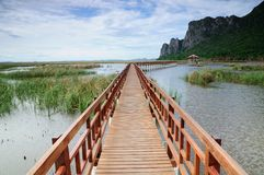 The long wooden bridge Stock Images