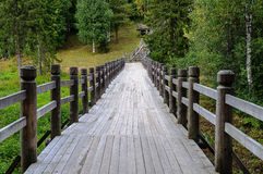 Long wooden footbridge in forest Stock Photography