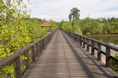 Long wooden footbridge,  near Manado, Sulawesi, Indonesia Royalty Free Stock Images