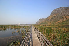 Long wooden jetty on nature lake. With mountain and nice sky background Royalty Free Stock Photo