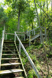 Long Wooden Outdoor Steps. A long set of outdoor wooden steps on a hiking trail Stock Images