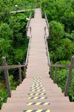 Long wooden pathway across above jungle. Vertically, shape like a pencil. Walkway to the end of public green park Royalty Free Stock Images