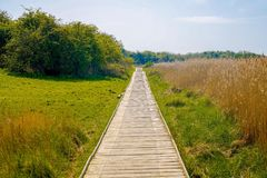 A long wooden pathway  in the countryside stock photo