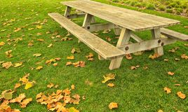 Picnic table. Long wooden picnic table on green grass with colorful autumn leaves scattered around Royalty Free Stock Photos