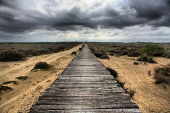 Long wooden way Stock Images