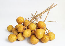 longan的果子 库存图片