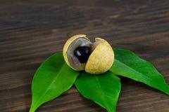 Longan Φρέσκα longan φρούτα Στοκ φωτογραφίες με δικαίωμα ελεύθερης χρήσης