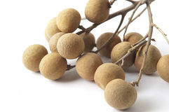 Longan. The dried longan, contains the Vitamin fruit richly Stock Images