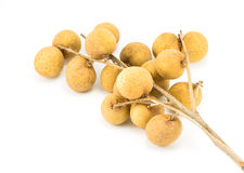 Longan Stockfotos